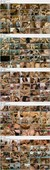DBM Videovertrieb CLARK 22 Full Movies (1990s) DVDRip